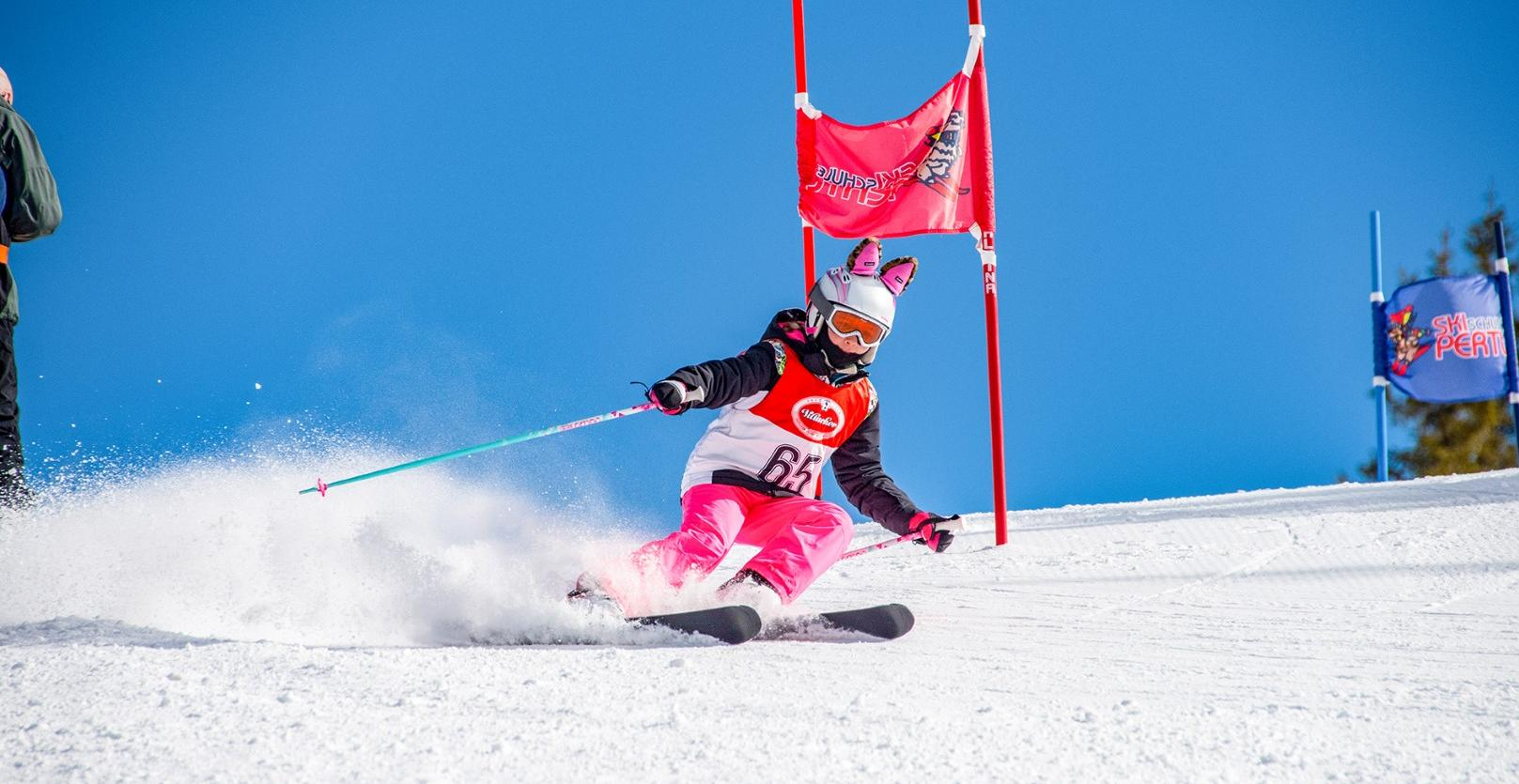 BOOK YOUR SKI COURSE NOW